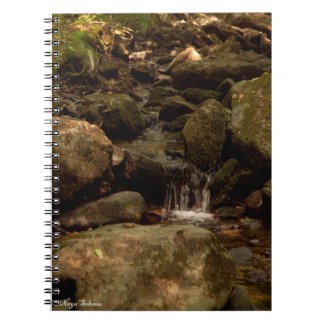 Tiny Waterfall Spiral Notebook