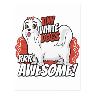 Tiny white dogs are awesome! postcard