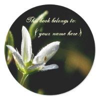 Tiny white flower sticker