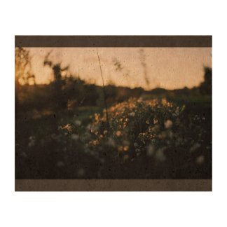 Tiny white flowers in grass photo cork paper