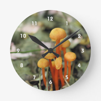 Tiny Wild Orange Mushrooms Nature Round Clock