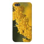 Tiny Yellow Flowers Covers For iPhone 5
