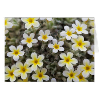 Tiny Yellow Flowers Greeting Card
