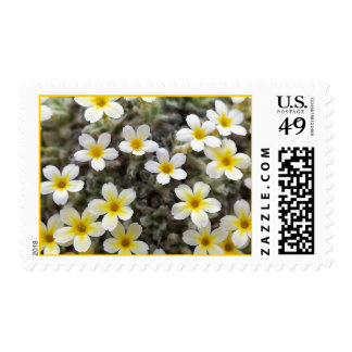Tiny Yellow Flowers Stamps
