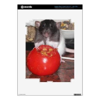 TinyTot Rat iPad 3 Skin
