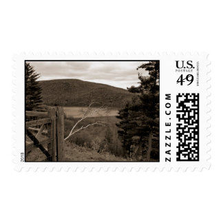 Tioga Downs, Pa   Postage Stamp