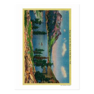 Tioga Lake and Mt. Dana in High Sierra Postcard