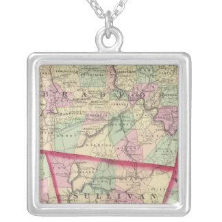 Tioga, Luzerne, Bradford, Sullivan, Wyoming Collar Plateado