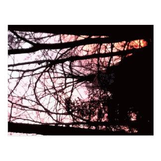 Tipi en bosque en la puesta del sol postales