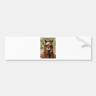Tipo de la alpaca pegatina para auto