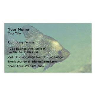 Tipo de pez negro tarjetas de visita