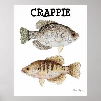 Tipo de pez impresiones