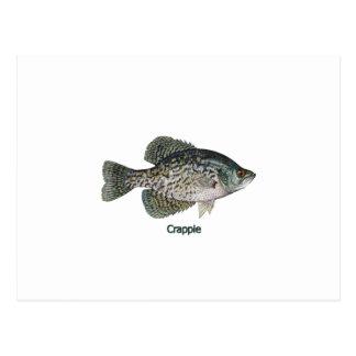 Tipo de pez (titulado) postales