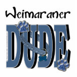 TIPO de Weimaraner Escultura Fotografica