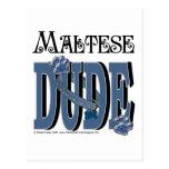 TIPO maltés Tarjetas Postales