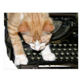 Tipos del gato del gatito tarjeta postal
