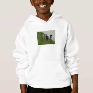 Tipper and Dixie - Border Collies Hoodie