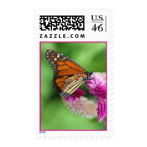 Tiptoe Stamp