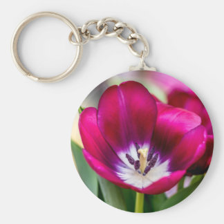 Tiptoe Through Keychain