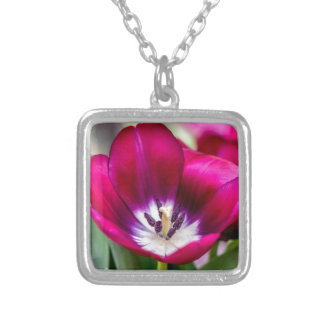 Tiptoe Through Silver Plated Necklace
