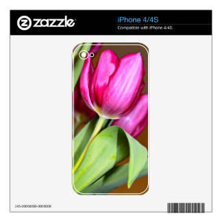 Tiptoe Through The Tulips Skin For iPhone 4S