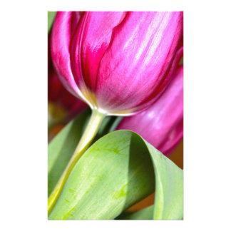 Tiptoe Through The Tulips Stationery