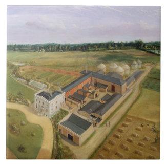 Tiptree Hall and Farm, Essex, c.1850-60 (oil on ca Tile