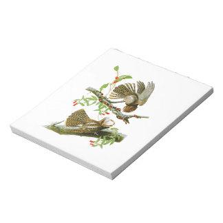 Tirada- Pájaros de Juan Audubon de la viuda de Blocs