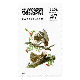 Tirada- Pájaros de Juan Audubon de la viuda de Estampillas