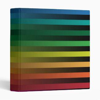 "Tiras del arco iris carpeta 1"""