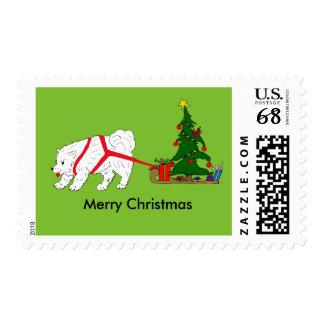 Tire del samoyedo que tira del árbol de navidad timbre postal