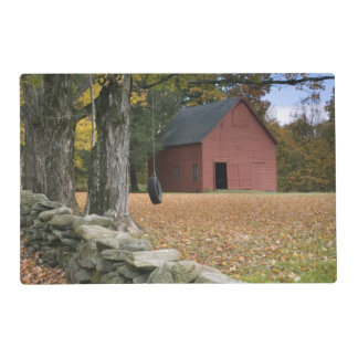 Tire swing along a road in Southern Vermont, Laminated Place Mat
