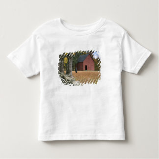 Tire swing along a road in Southern Vermont, Toddler T-shirt