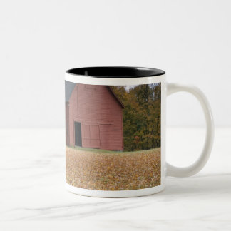 Tire swing along a road in Southern Vermont, Two-Tone Coffee Mug