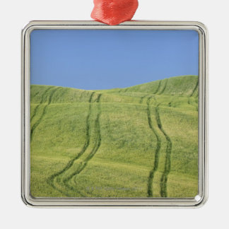 Tire Tracks in Wheat Field, Val d'Orcia, Siena Metal Ornament