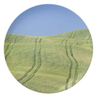 Tire Tracks in Wheat Field, Val d'Orcia, Siena Plates