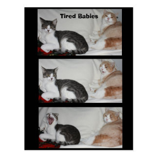 Tired Babies Postcard