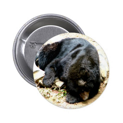 Tired Bear 2 Inch Round Button
