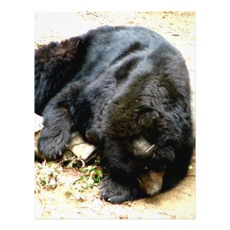 Tired Bear Flyer