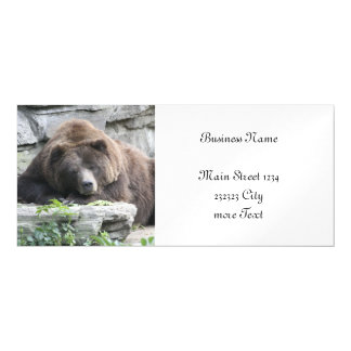 Tired Bear Magnetic Card