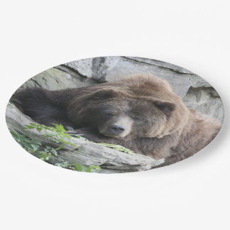 Tired Bear Paper Plate