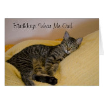 Tired Cat Birthday Card