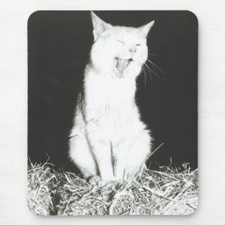 Tired Cat Mouse Pad