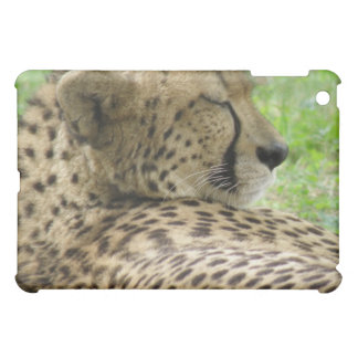 Tired Cheetah iPad Case