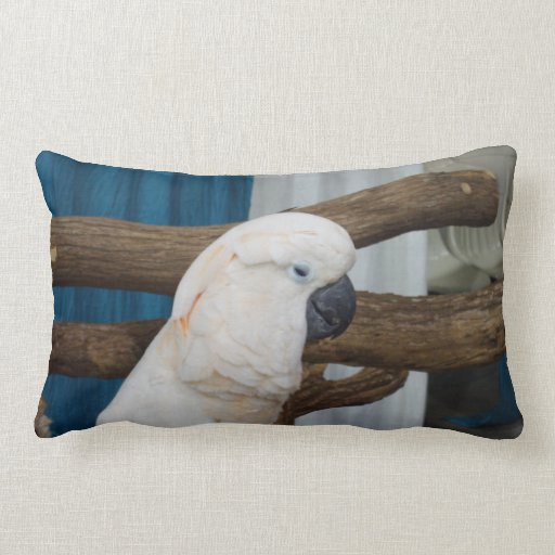 Tired Cockatoo Throw Pillows