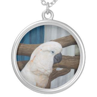 Tired Cockatoo Round Pendant Necklace
