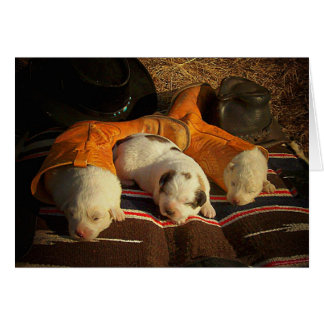 Tired Cowboy Puppies Card