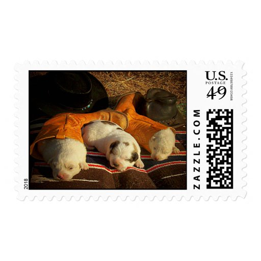 Tired Cowboy Puppies Postage