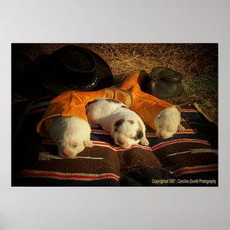 Tired Cowboy Puppies Print