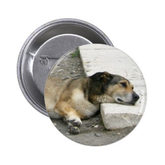 Tired Dog button, customize Pinback Button